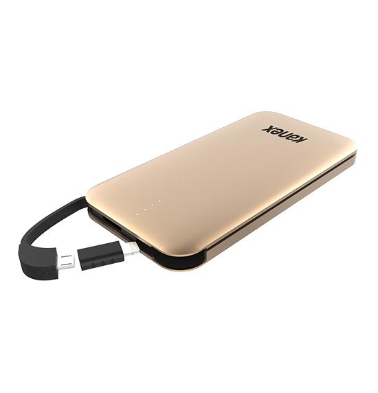 Gopower Plus Battery